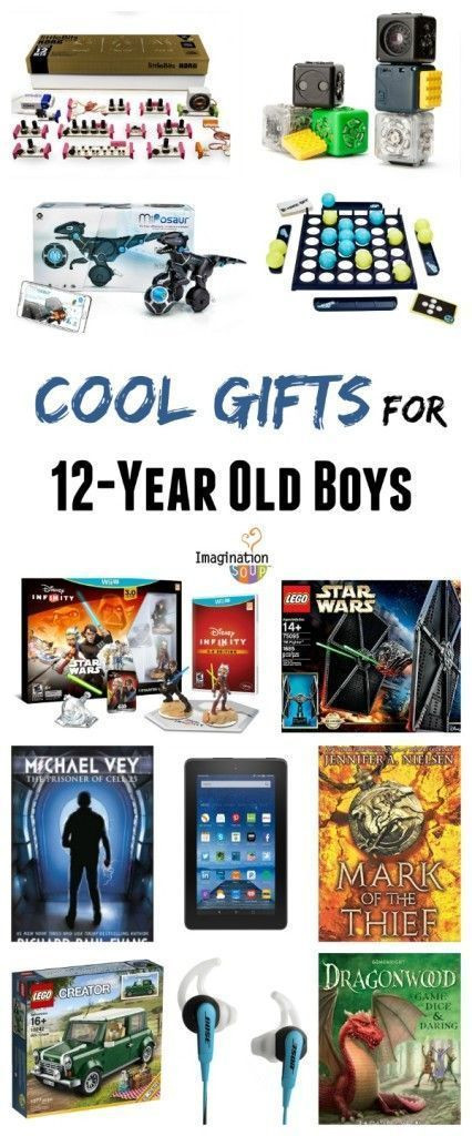 12 Year Old Boy Birthday Gifts  Gifts for 12 Year Old Boys