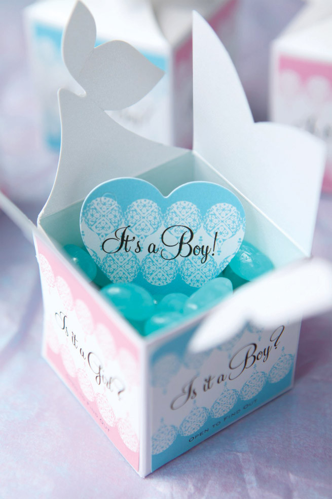 Baby Gender Reveal Gift Ideas  Baby Gender Reveal Gifts Party Inspiration