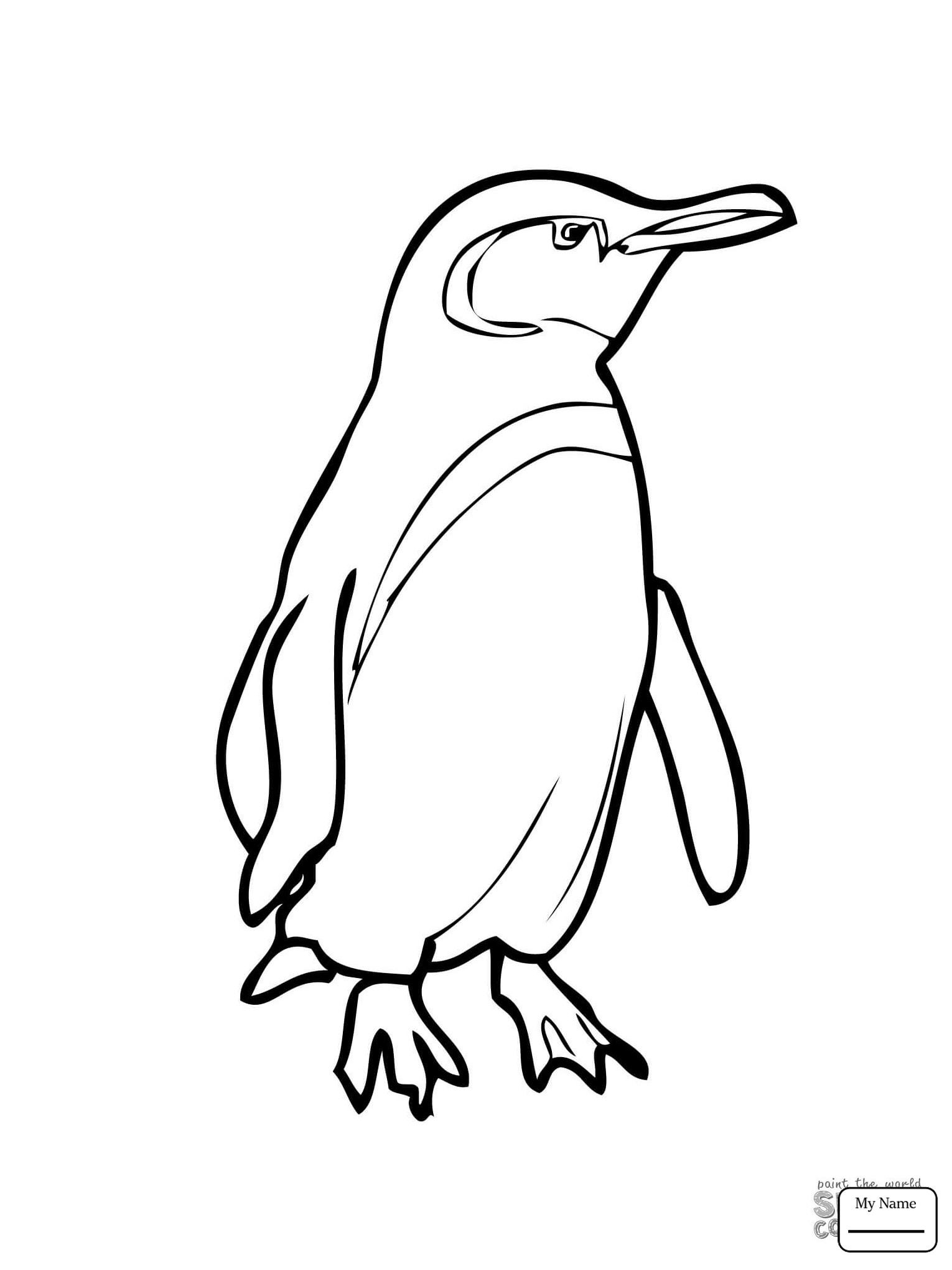 Baby Penguin Coloring Page  Baby Penguin Coloring Pages