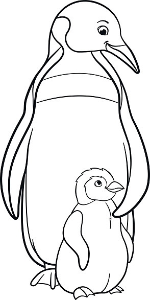 Baby Penguin Coloring Page  Coloring Pages Mother Penguin With Her Cute Baby Stock