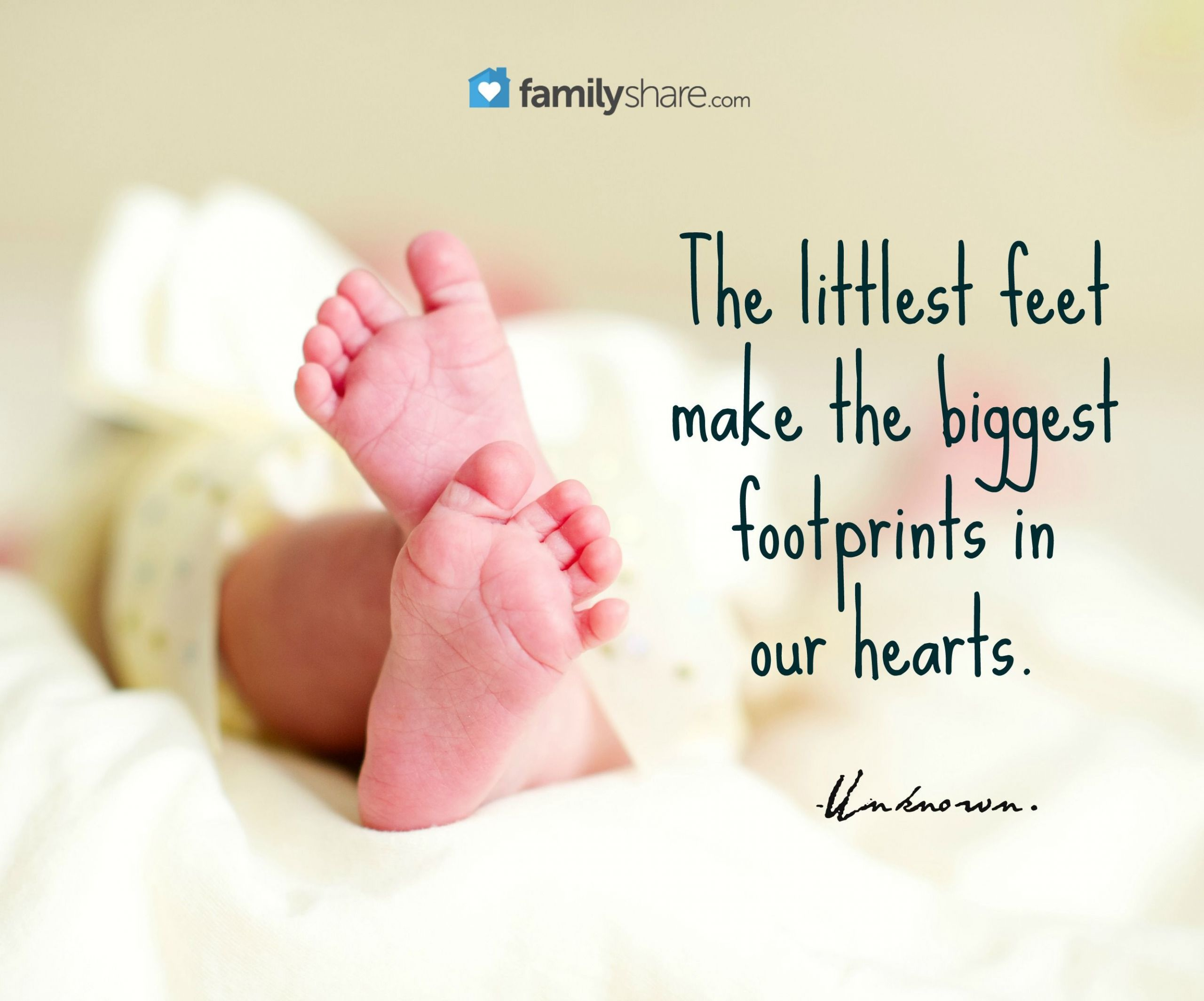 Baby Toes Quotes  The littlest feet make the biggest footprints in our