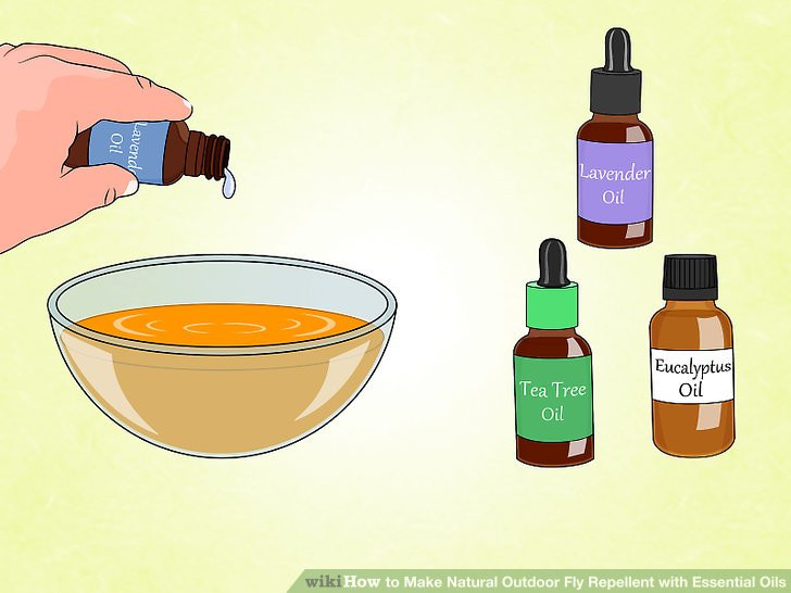 Backyard Fly Repellent  3 Ways to Make Natural Outdoor Fly Repellent with