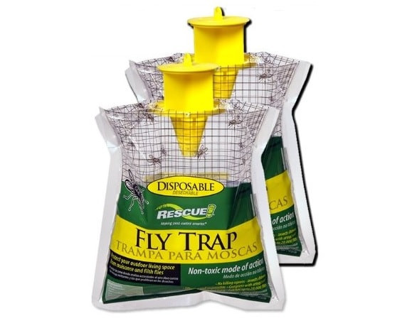 Backyard Fly Repellent  How to rid of house flies a review of the best traps
