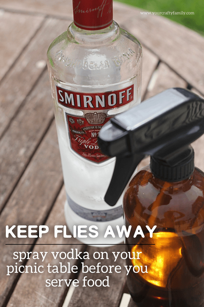 Backyard Fly Repellent  50 Backyard Hacks