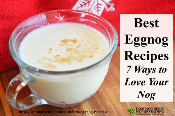 Best Homemade Eggnog  Best Eggnog Recipes 7 Ways to Love Your Nog