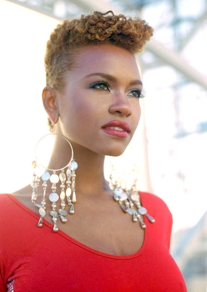 Black Women Hairstyles  23 Must See Short Hairstyles for Black Women