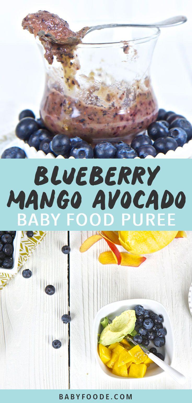 Blueberry Baby Food Recipe  Blueberry Mango Avocado Baby Food Puree Recipe