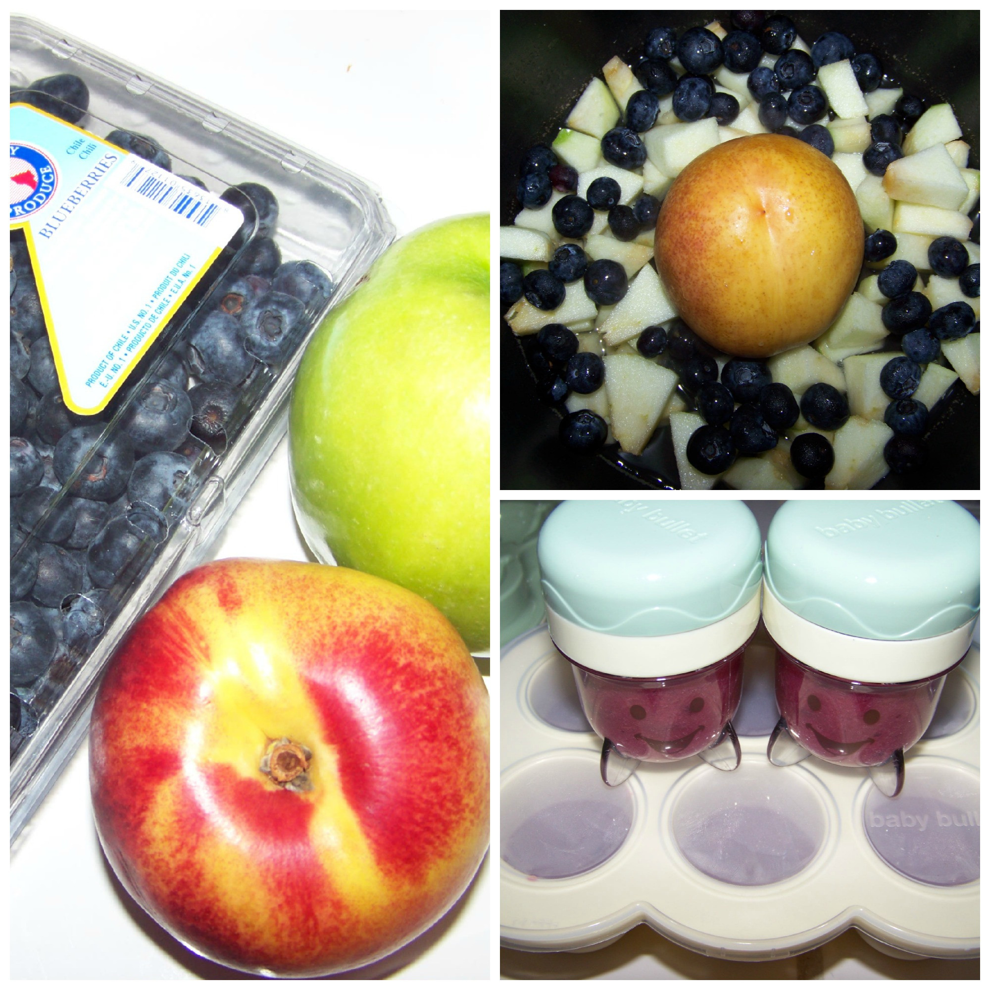 Blueberry Baby Food Recipe  Homemade Baby Food Recipes Blueberries Peaches & Apples