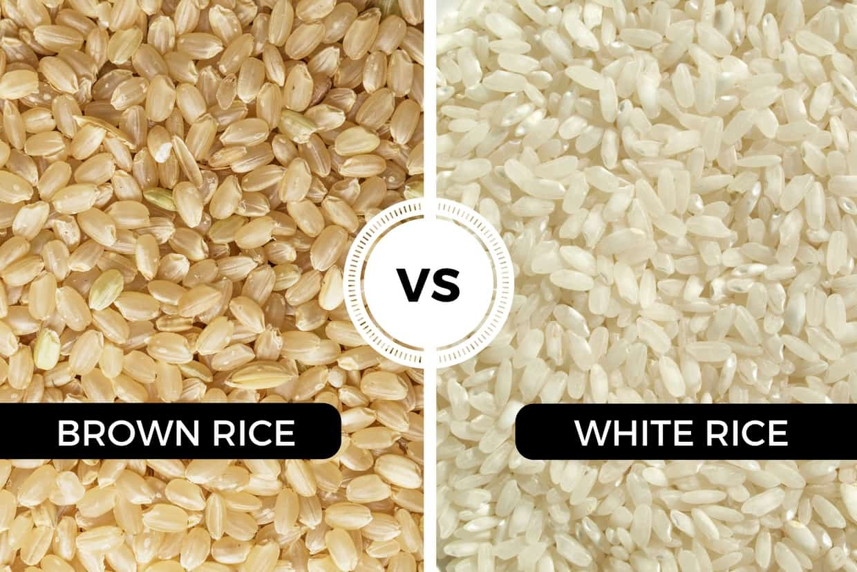 Brown Vs White Rice  Brown Rice vs White Rice What are the differences