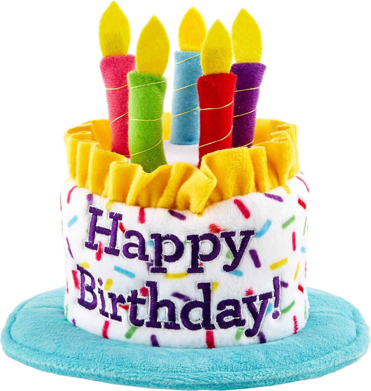 Cake Birthday Images  Frisco Birthday Cake Dog Hat Medium Chewy