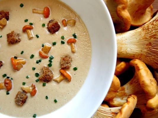 Chanterelle Mushrooms Soup  Cream of chanterelle soup recipe