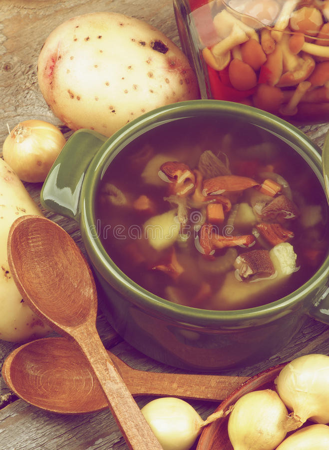 Chanterelle Mushrooms Soup  Soup With Chanterelle Mushrooms Stock Image Image of