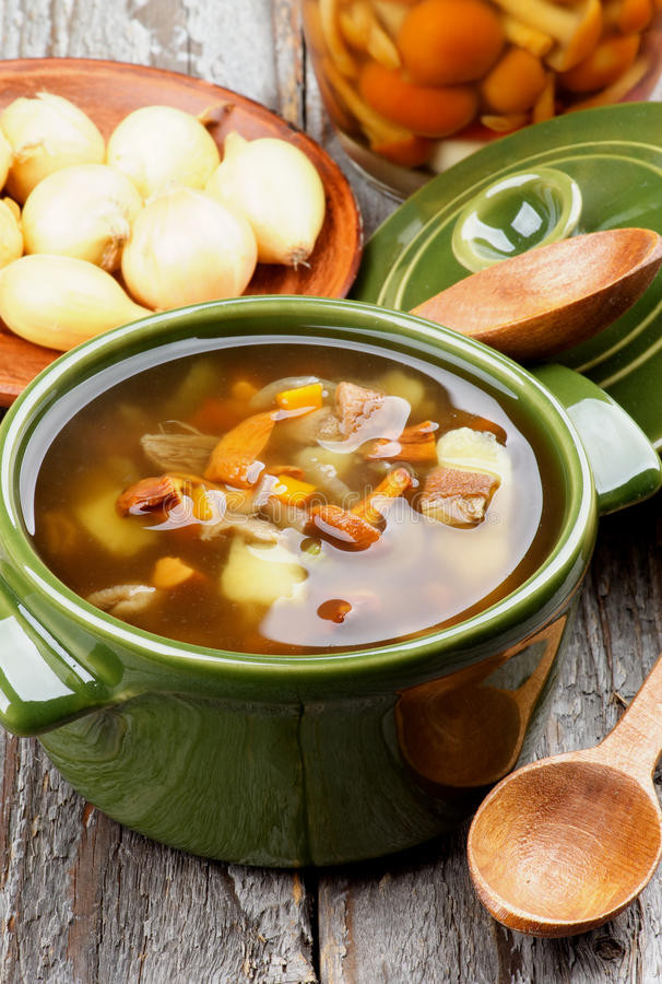 Chanterelle Mushrooms Soup  Soup With Chanterelle Mushrooms Stock Image of