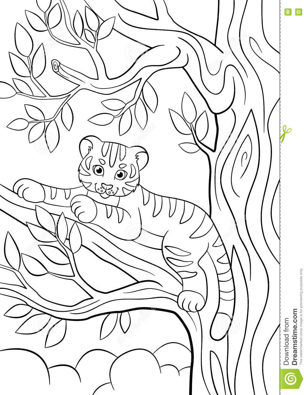 Cute Baby Tiger Coloring Pages  Coloring Pages Wild Animals Little Cute Baby Tiger