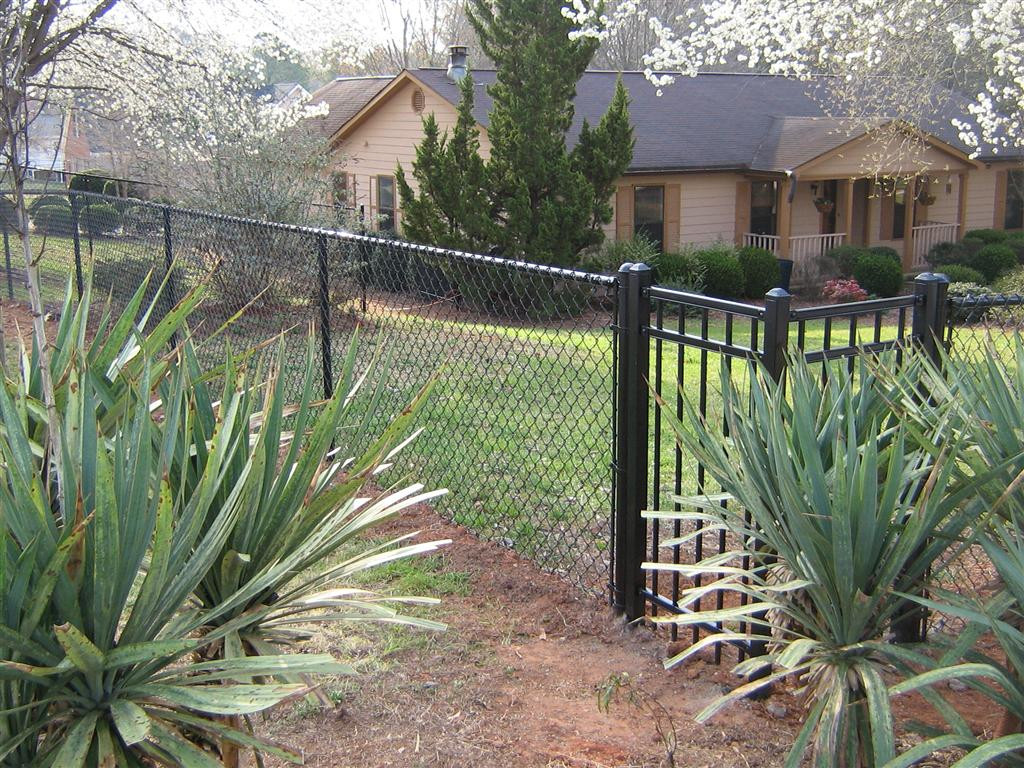 Fence Pictures For Backyard  Backyard Fence Decorating Ideas with a Chain link Fence
