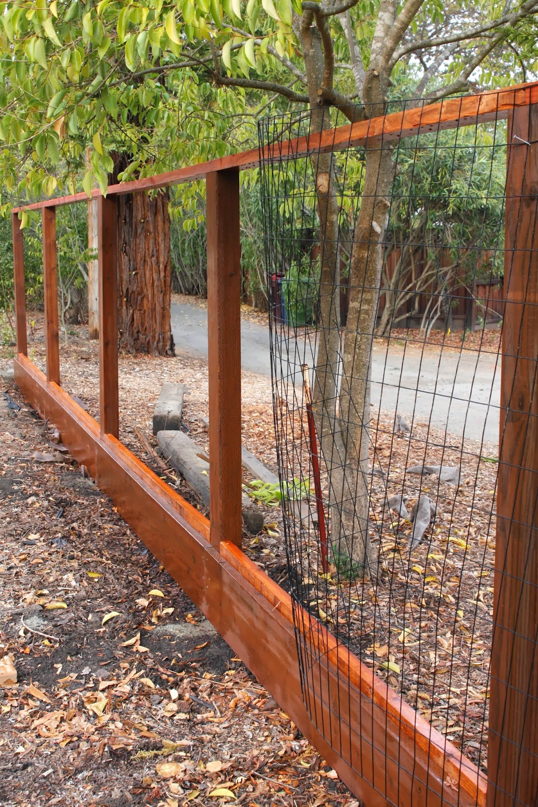 Fence Pictures For Backyard  Outdoor Udate Deer Fence simply organized