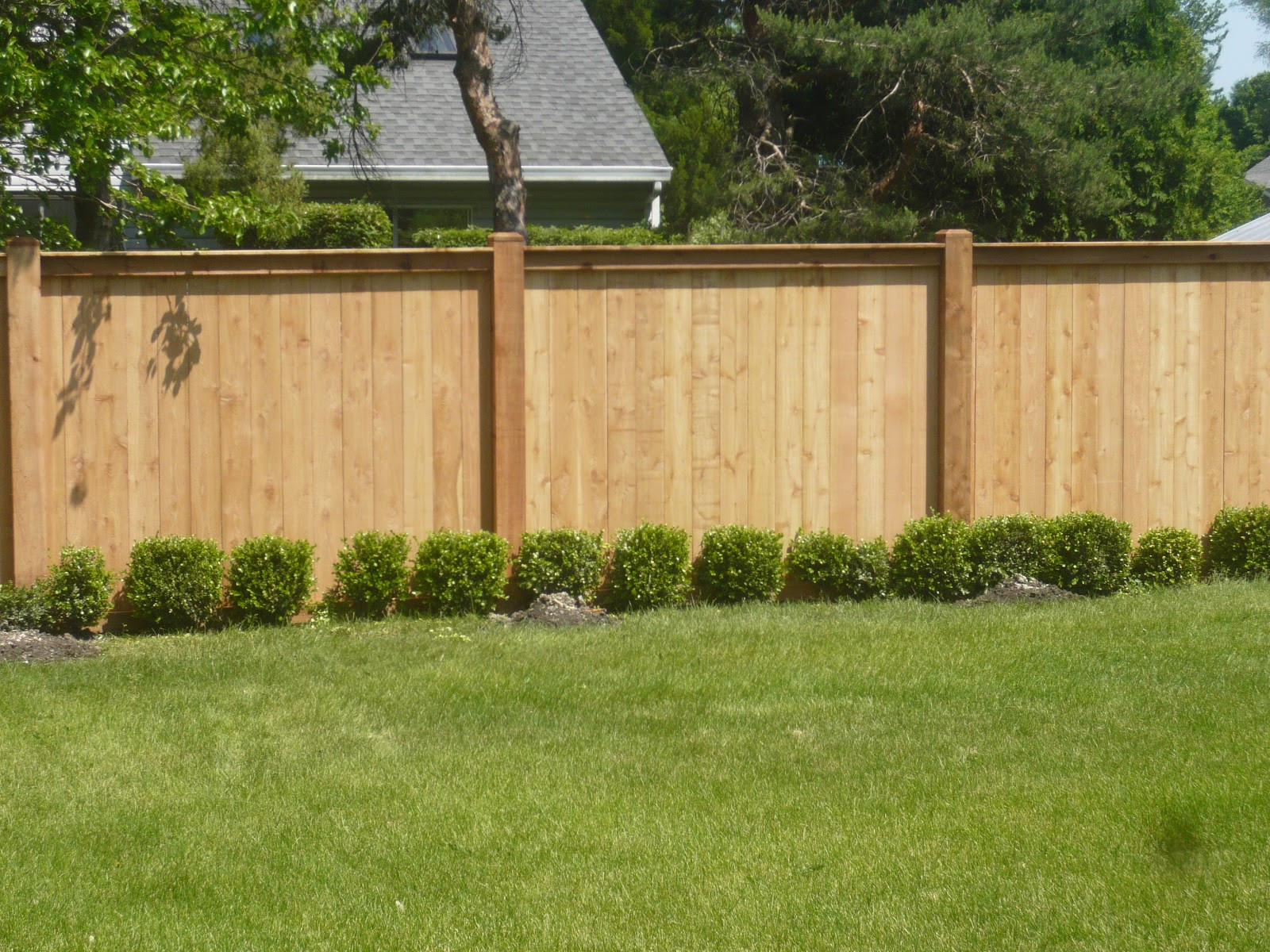 Fence Pictures For Backyard  Dreams and Epiphanies Backyard Fence Before and