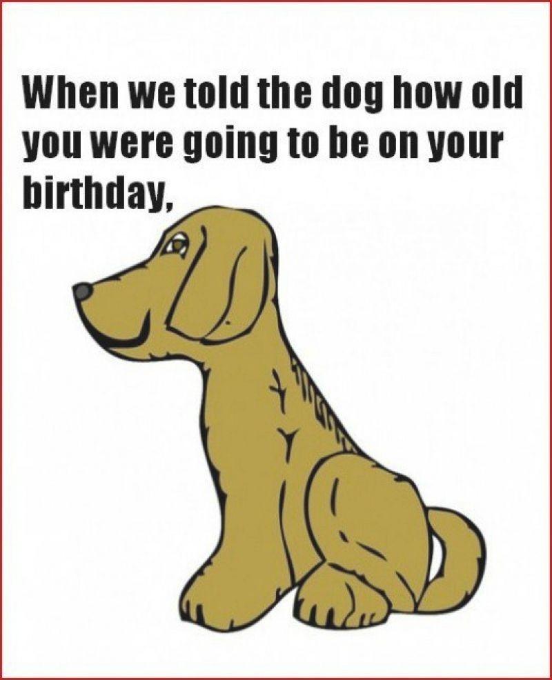 Funny Birthday Cards To Print  Free printable funny birthday cards for adults Printable