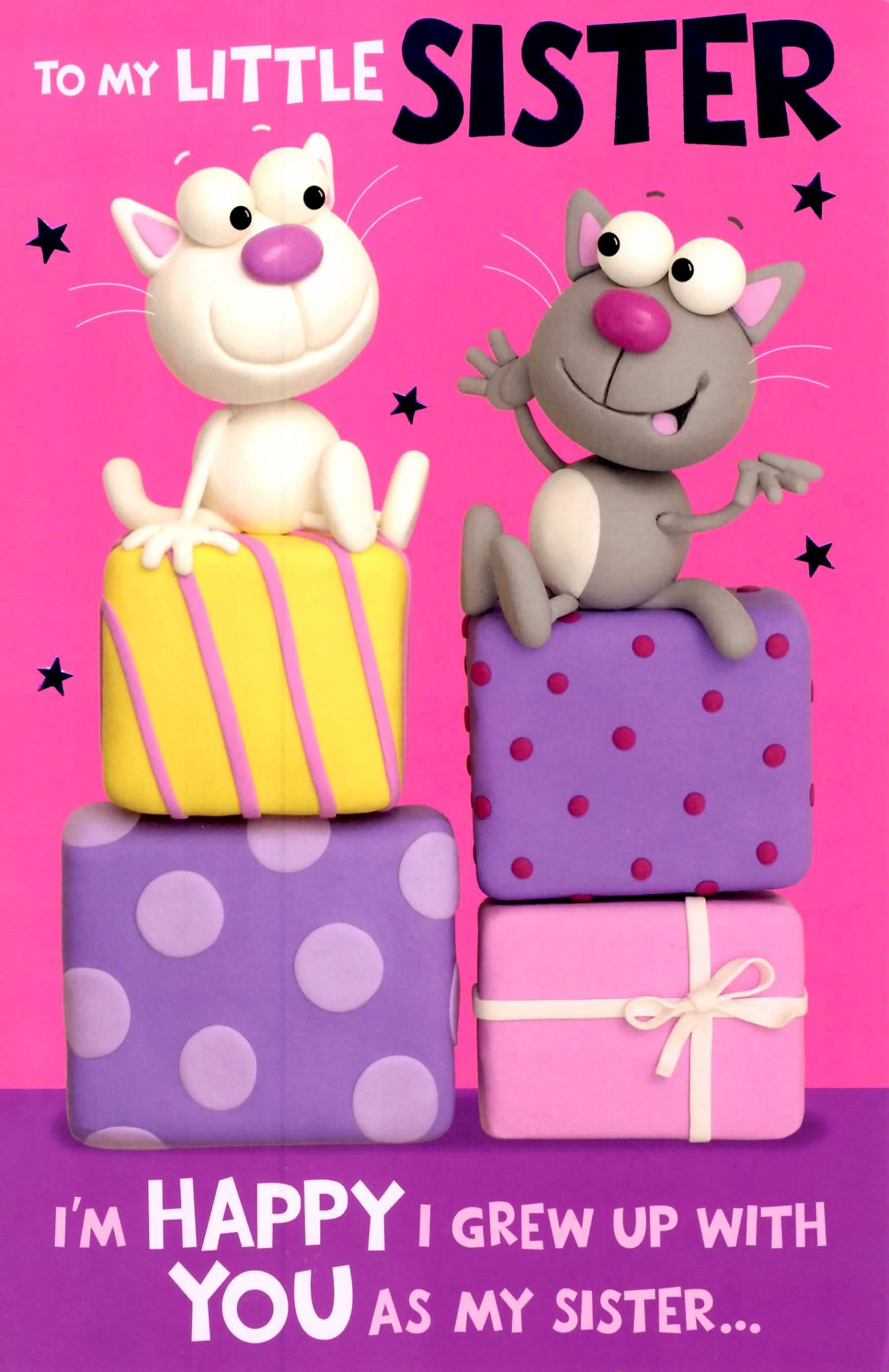 Funny Sister Birthday Wishes  Cute Funny Little Sister Birthday Greeting Card Crackers