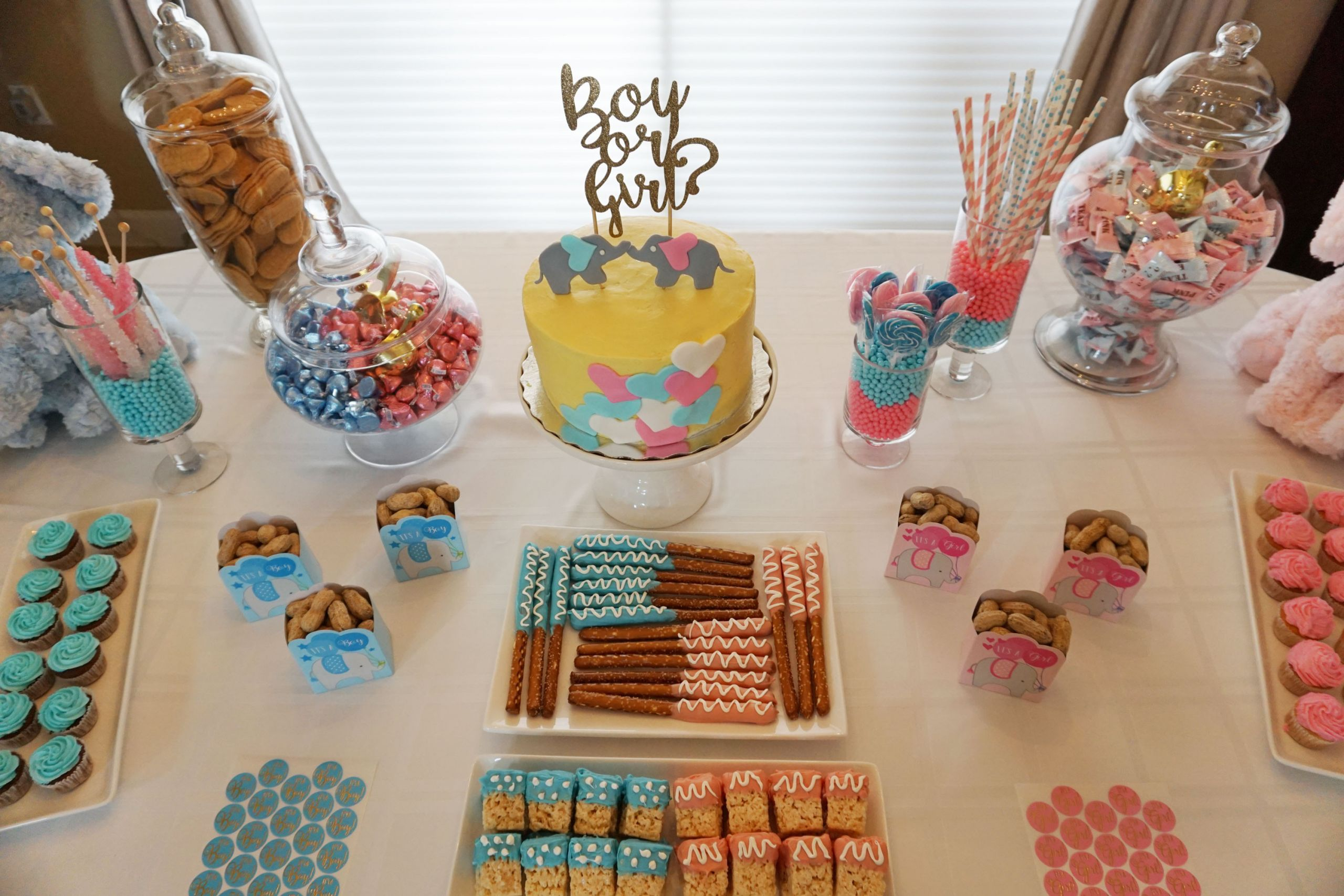 Gender Reveal Ideas For Party  Baby s Gender Reveal Party gen y girl