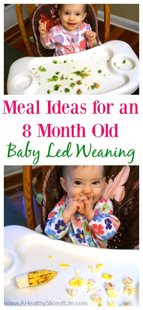 Gift Ideas For 8 Month Old Baby Girl  Baby Led Weaning Meal Ideas 8 Months Old