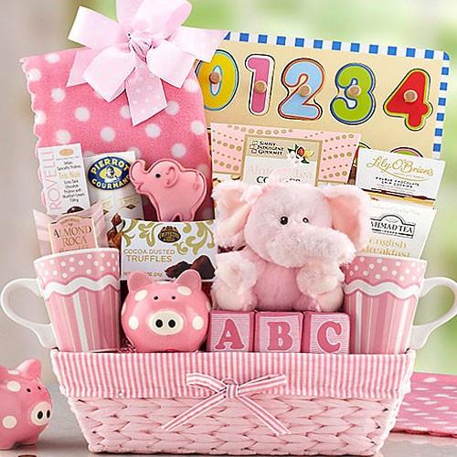 Gift Ideas For New Baby Girl  New Baby Girl Basket