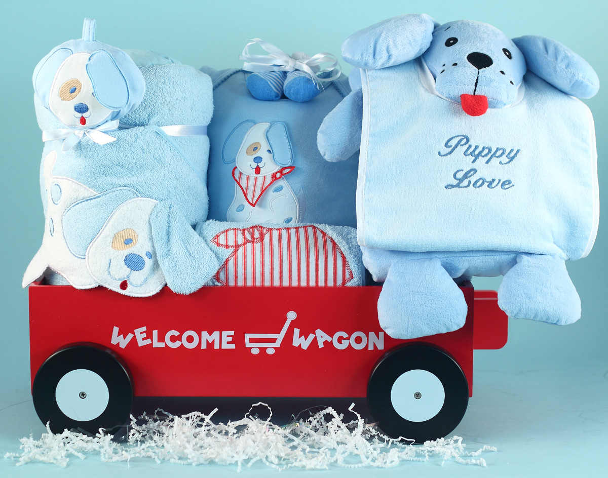 Gift Ideas For Newborn Baby Boy  5 Best Baby Boy Gifts News from Silly Phillie