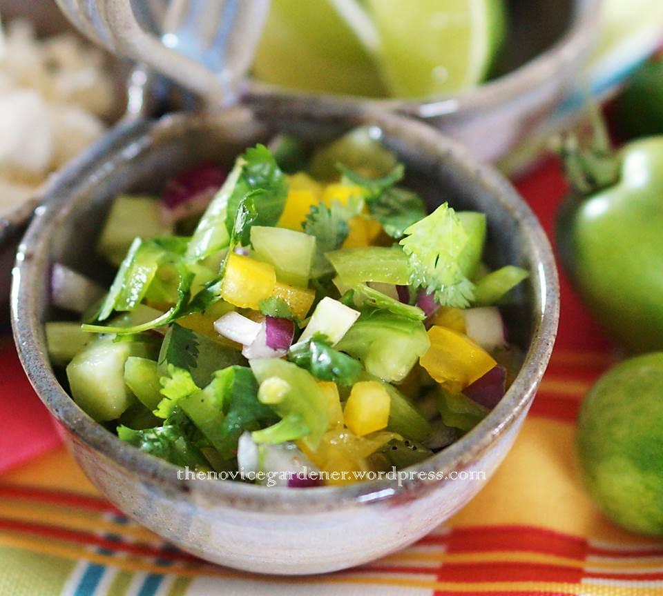 Green Tomato Salsa  Green Tomato Chili