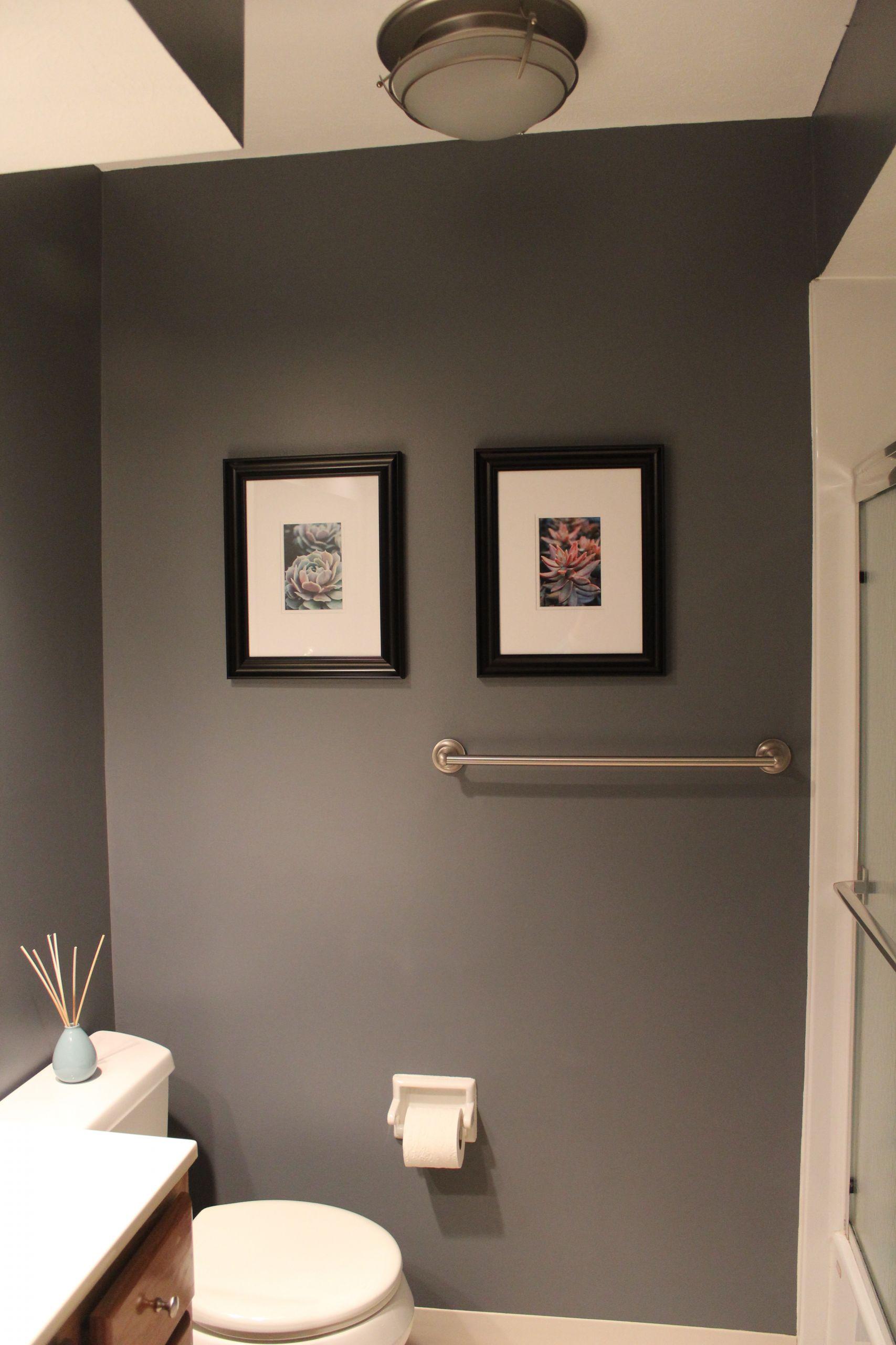 Grey Paint Colors For Bathroom  bathroom