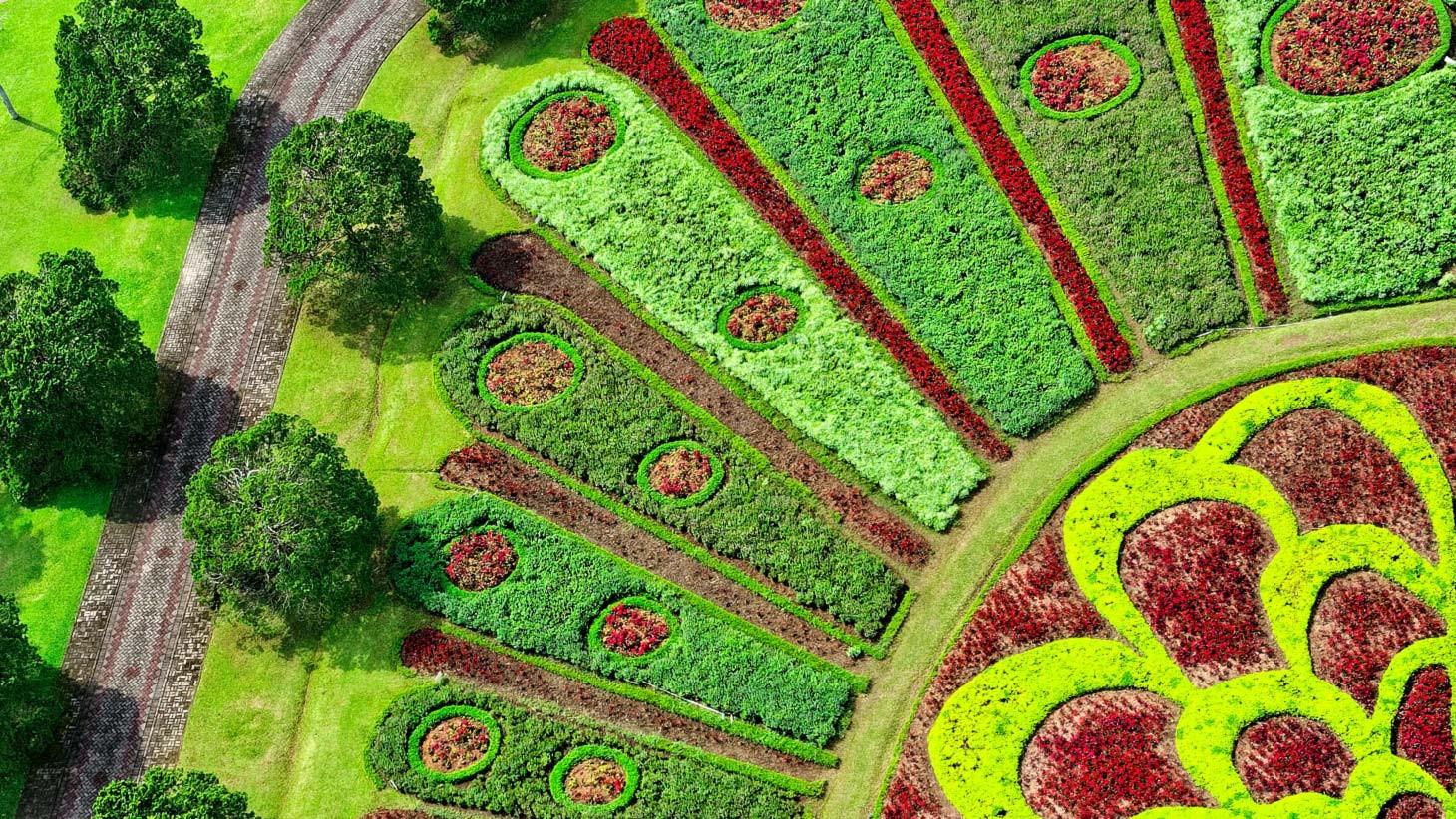 Landscape By Design  Landscape Design Certificate Emory University