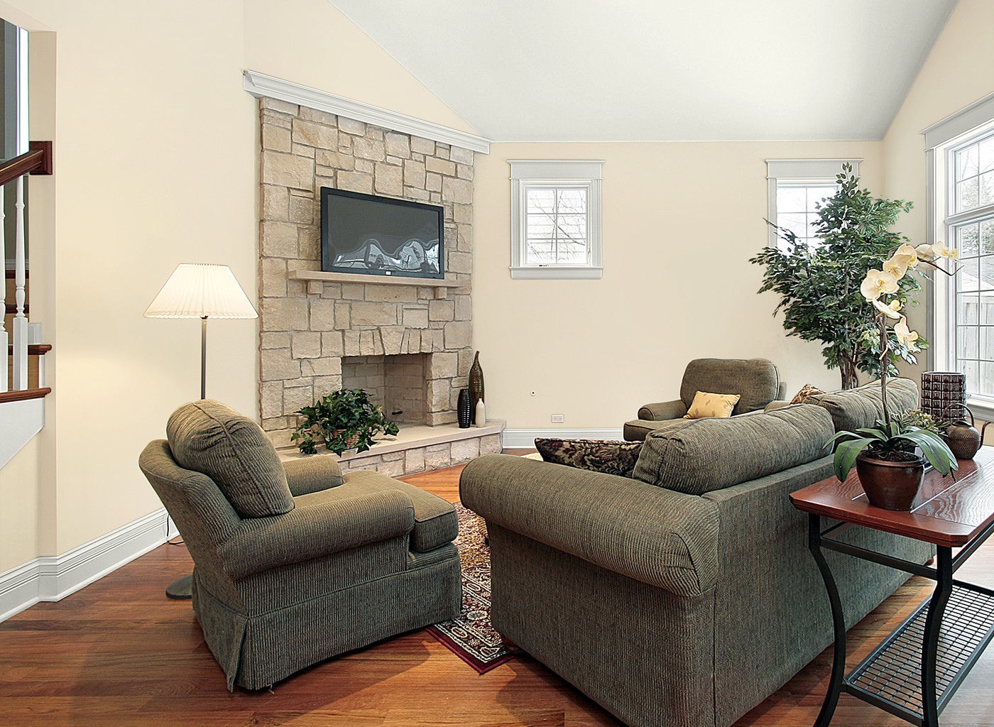Paint Living Room  How to Choose a Paint For Your House