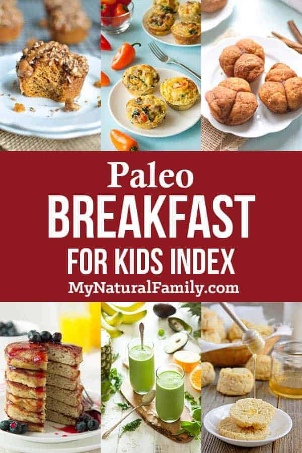Paleo Recipes For Kids  Paleo for Kids Recipes They ll Actually Eat Anytime My