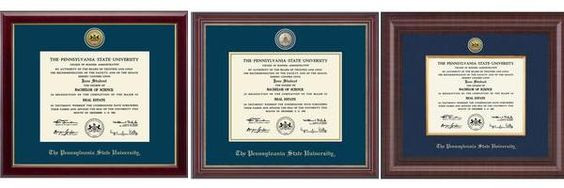 Penn State Graduation Gift Ideas  Tops Lion pride and Lion on Pinterest