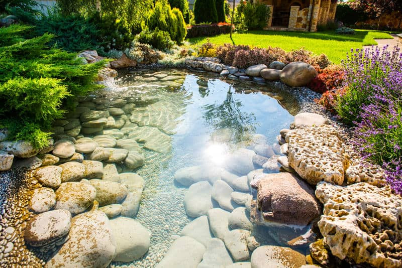 Pond In Backyard  60 Backyard Pond Ideas s