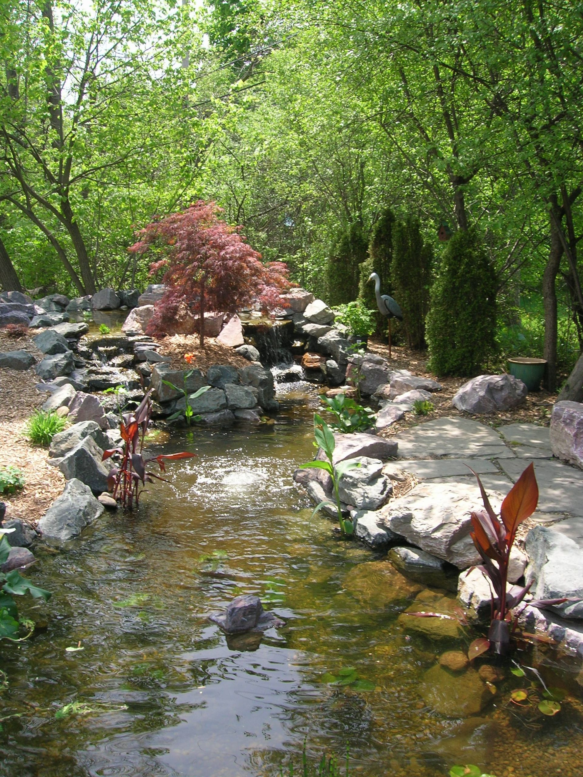 Pond In Backyard  Koi Pond in SE Michigan Landscape Artisan