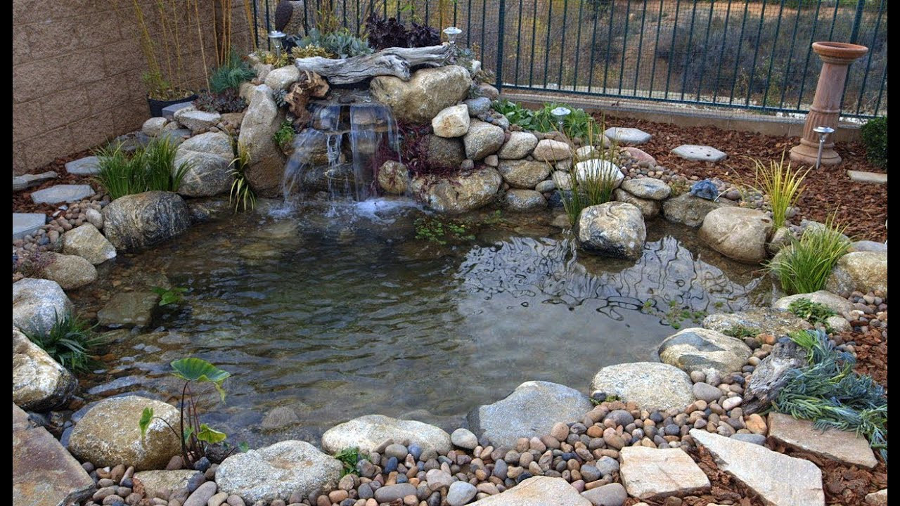 Pond In Backyard  Ponds Gone Wrong
