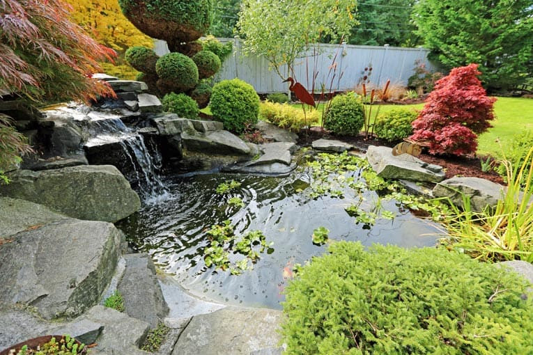 Pond In Backyard  Garden Pools Fountains & Water Features