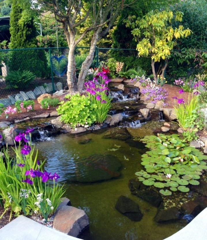Pond In Backyard  20 Beautiful Backyard Waterfalls And Ponds You Should Not