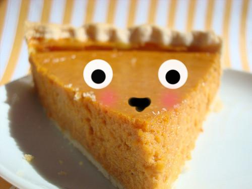 Pumpkin Pie Recipe With Sweetened Condensed Milk  Best Ever Pumpkin Pie with Sweetened Condensed Milk