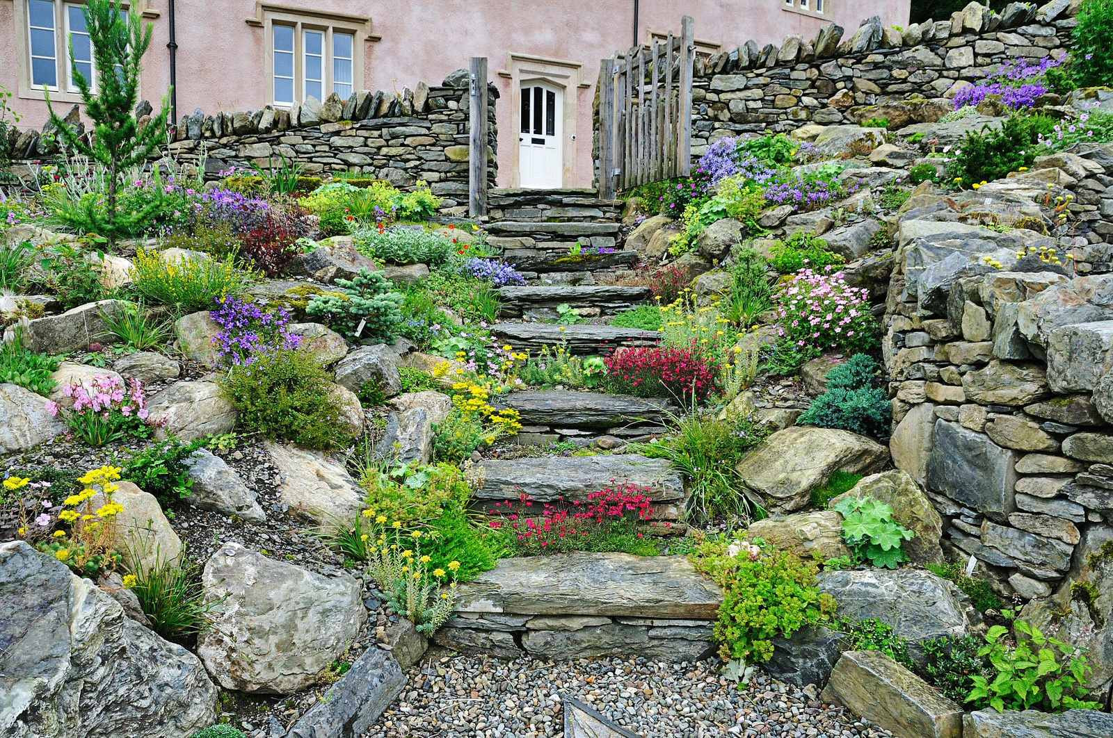 Terrace Landscape Plants  Amping up your walkways to boost your yard s curb appeal