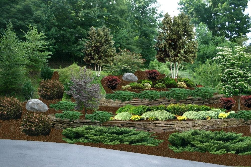 Terrace Landscape Plants  Terracing A Hillside For Garden Steep Landscaping Ideas