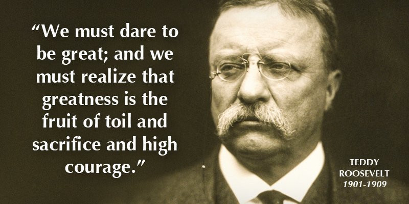 Theodore Roosevelt Quotes On Leadership  Top 12 Theodore Roosevelt Quotes The Man in the Arena