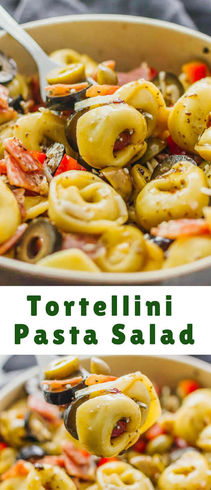 Tortellini Pasta Salad With Italian Dressing  Tortellini Pasta Salad with Italian Dressing Blogger Bests