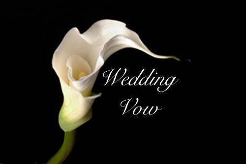 Wedding Vows For Him Funny  30 Funny Wedding Vows for Him or Her