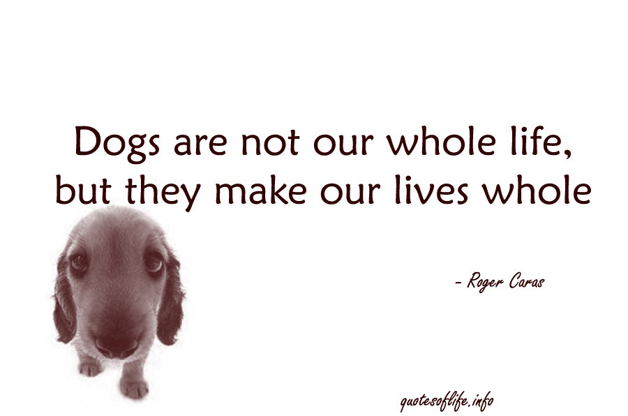 Whole Life Quote  Animal Quotes 449 Quotes Page 53