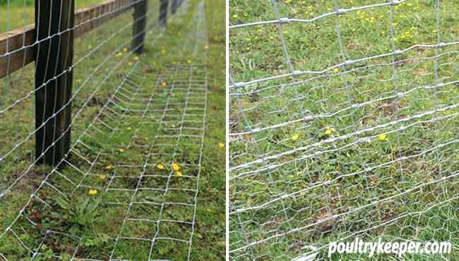Word Whizzle Backyard  Fence prevent dog digging With images