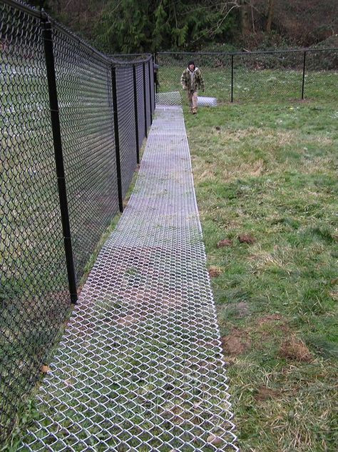 Word Whizzle Backyard  Backyard ideas for dogs that dig chicken wire 19 super
